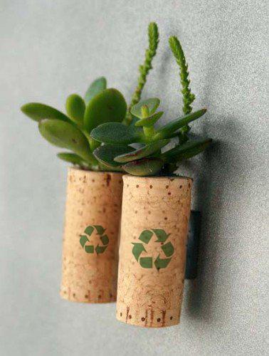 reciclar-sfw